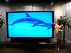Largest rear projection TV from JVC