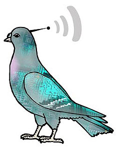 Remote controlled pigeons now available