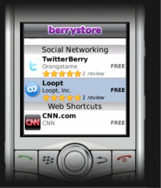 BerryStore Caters For All BlackBerries