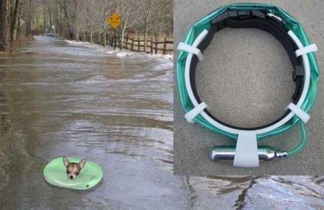 Float-a-Pet System Rids Drowning Fears