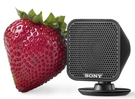Sony HST-S100 Goes Small