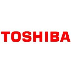 Toshiba SCiB Battery Charges Fast