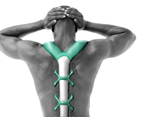 VertaBrate Massages Back For Pain Relief