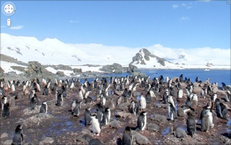 Google Street View Visits The Antarctica Now