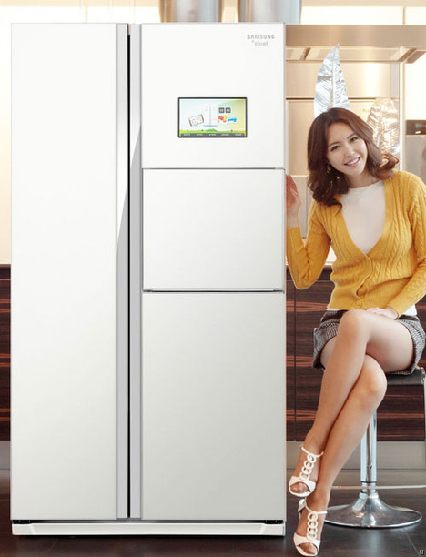 Samsung Zipel refrigerator surfs the Internet