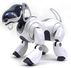 Sony AIBO ERS-7M2 review